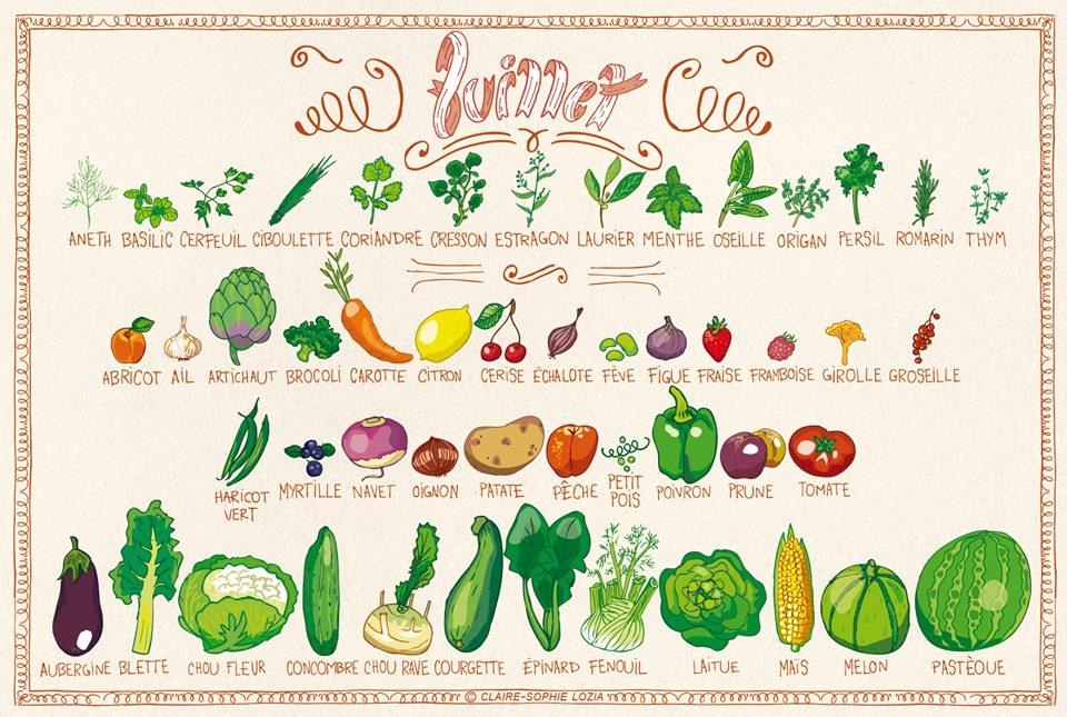Fruits & Légumes Juillet