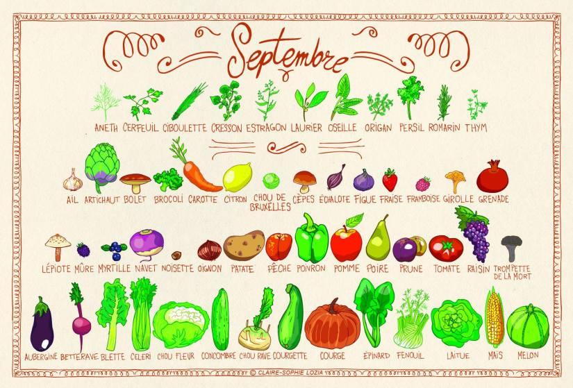 Fruits & Légumes Septembre