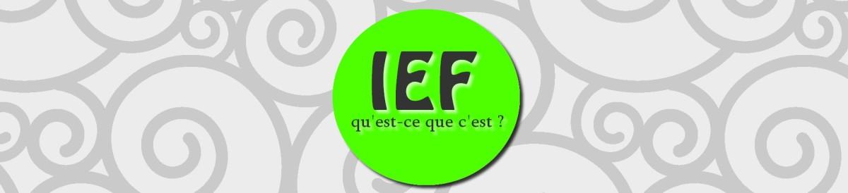 L'IEF, c'est quoi ce donc ?